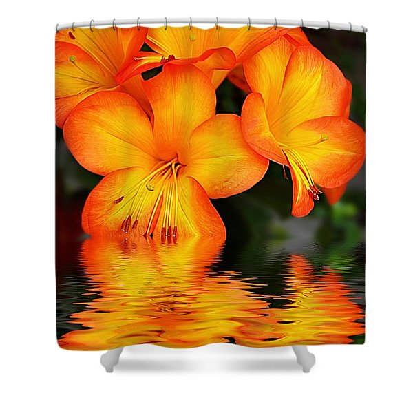 Golden Dreams Shower Curtain by Kaye Menner