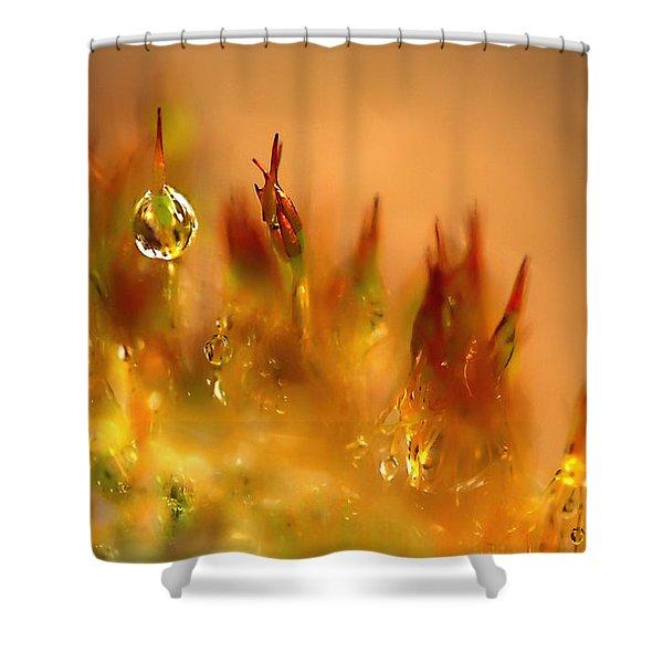 Golden Palette Shower Curtain by Annie  Snel
