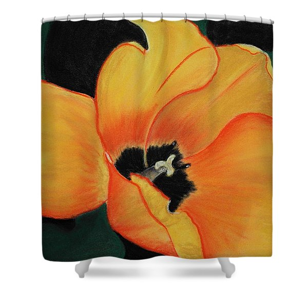 Golden Tulip Shower Curtain by Anastasiya Malakhova