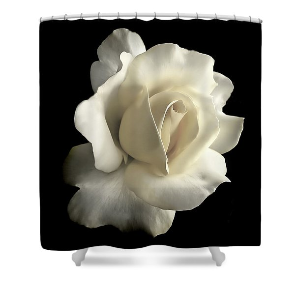 Grandeur Ivory Rose Flower Shower Curtain by Jennie Marie Schell