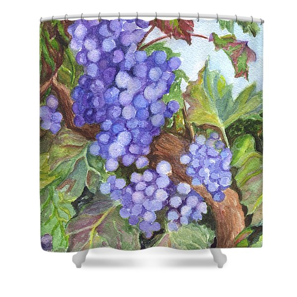 Grapes For The Harvest Shower Curtain by Carol Wisniewski