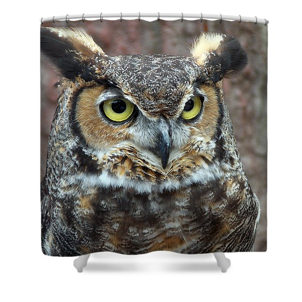 GREAT AND HORNED Shower Curtain by Skip Willits