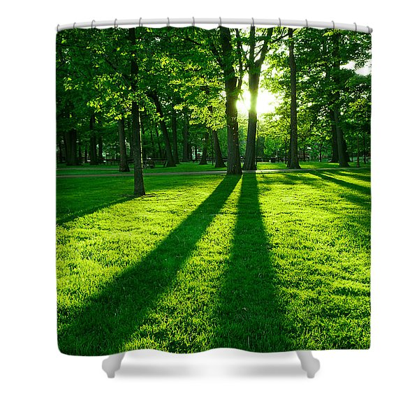 Green park Shower Curtain by Elena Elisseeva
