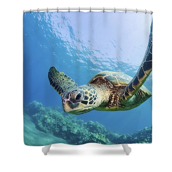 Green Sea Turtle - Maui Shower Curtain by M Swiet Productions