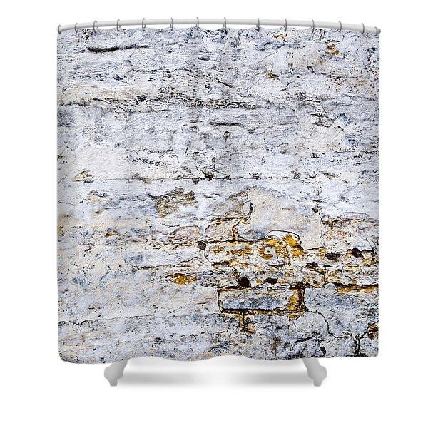 Grunge wall Shower Curtain by Elena Elisseeva