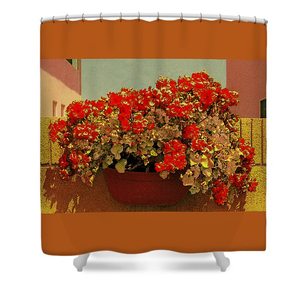 Hanging Pot With Geranium Shower Curtain by Ben and Raisa Gertsberg