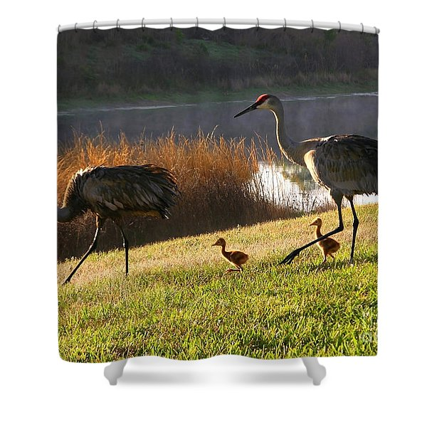 Happy Sandhill Crane Family Shower Curtain by Carol Groenen