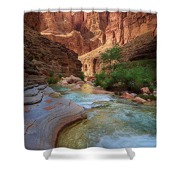 Havasu Creek Shower Curtain by Inge Johnsson