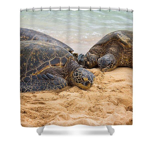 Hawaiian Green Sea Turtles 1 - Oahu Hawaii Shower Curtain by Brian Harig
