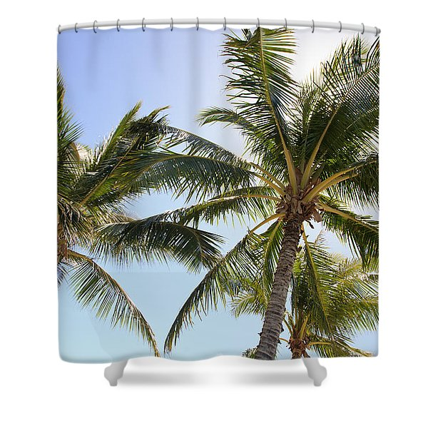 Hawaiian Palm Trees Shower Curtain by Brandon Tabiolo