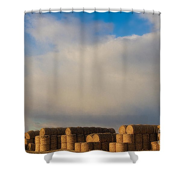 Hay Bales Shower Curtain by James BO  Insogna