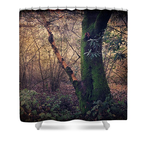 He Filled My Days With Endless Wonder Shower Curtain by Laurie Search