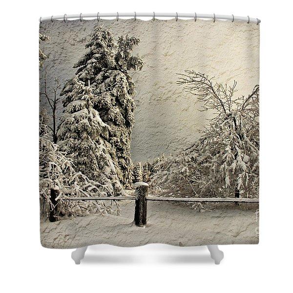 Heavy Laden Blizzard Shower Curtain by Lois Bryan