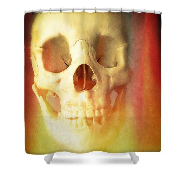 Hell Fire Shower Curtain by Edward Fielding