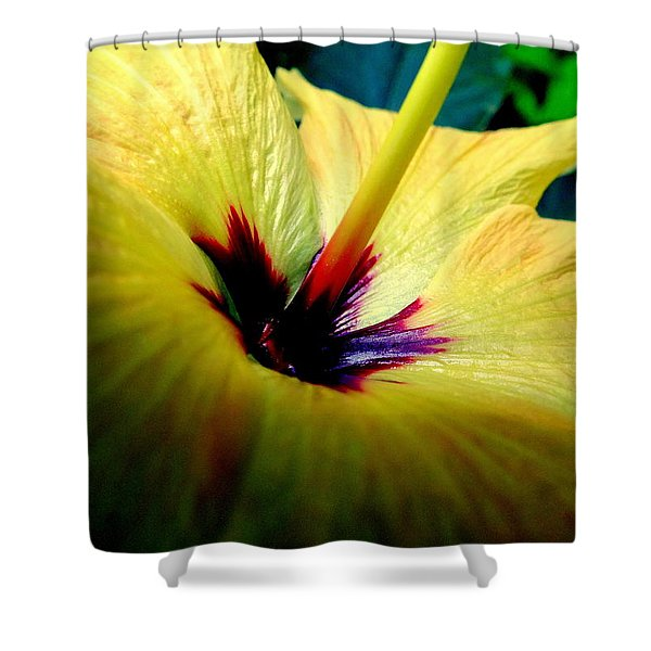 Her Majesty Shower Curtain by KAREN WILES