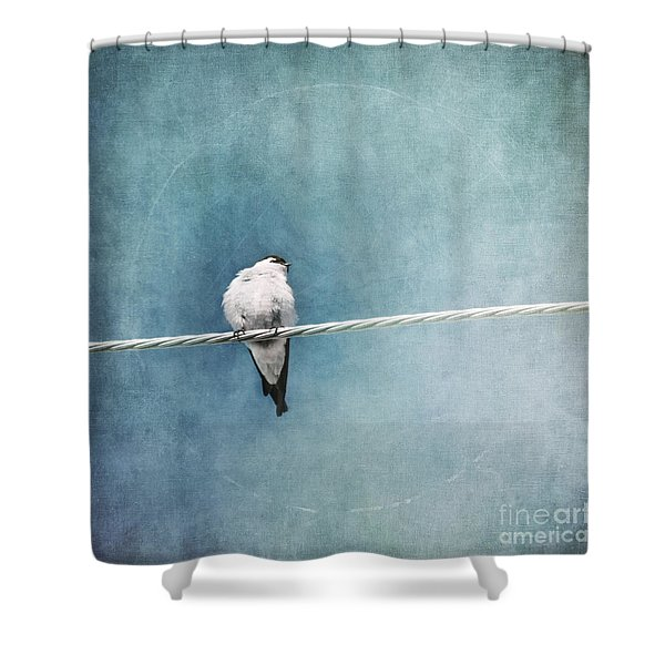 herald of spring Shower Curtain by Priska Wettstein