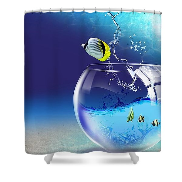 Here Fishy Fishy Shower Curtain by Gianfranco Weiss