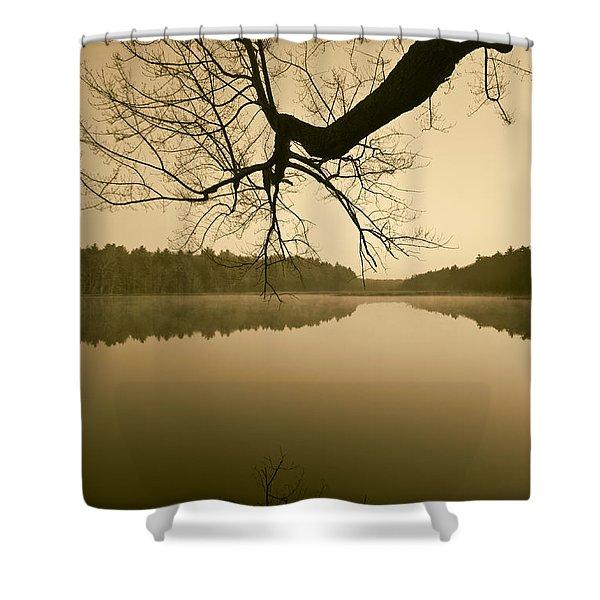 Hewitt Pond No. 2 - vertical Shower Curtain by David Gordon