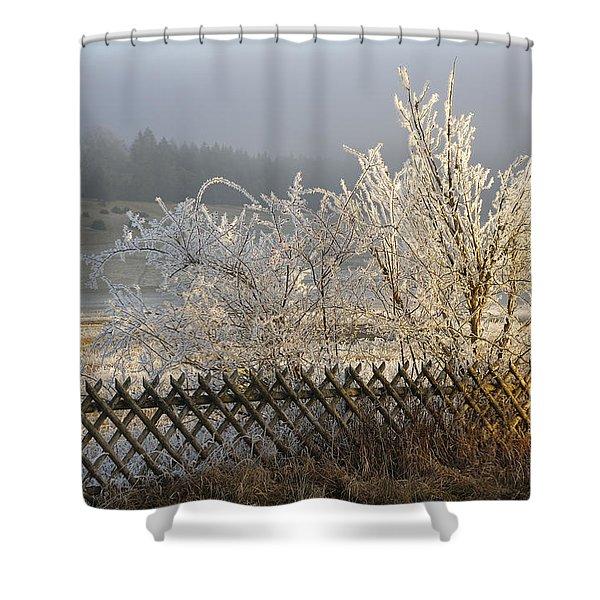 Hoarfrost In Winter Shower Curtain by Matthias Hauser