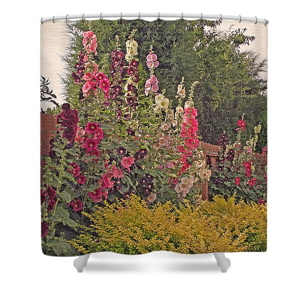 Hollyhocks Shower Curtain by Kay Novy