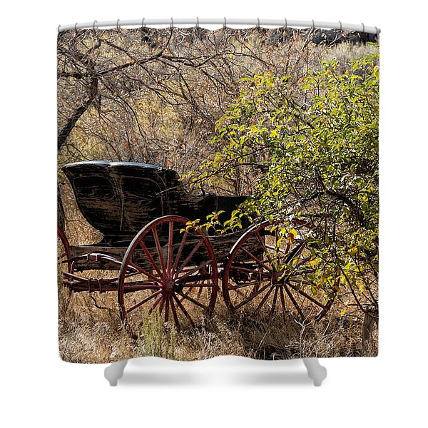 Horse-drawn Buggy Shower Curtain by Kathleen Bishop
