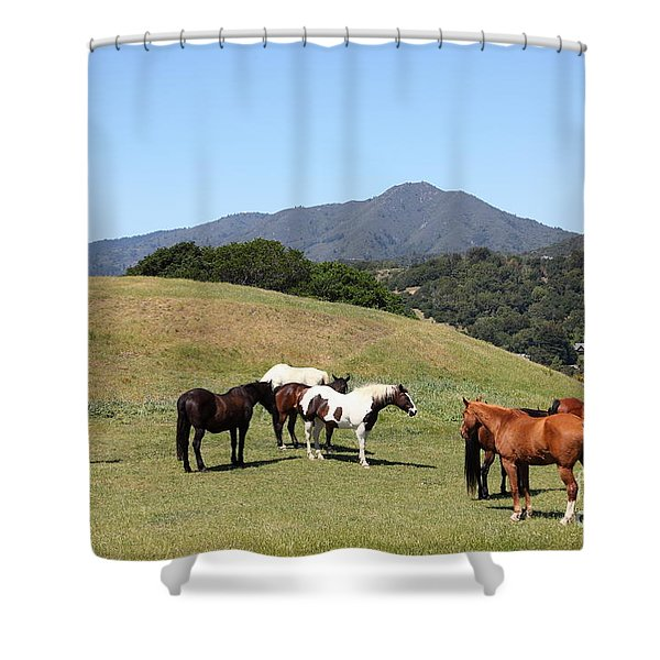 Horse Hill Mill Valley California 5D22672 Shower Curtain by Wingsdomain Art and Photography