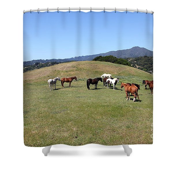 Horse Hill Mill Valley California 5D22673 Shower Curtain by Wingsdomain Art and Photography