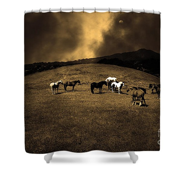 Horses of The Moon Mill Valley California 5D22673 sepia Shower Curtain by Wingsdomain Art and Photography