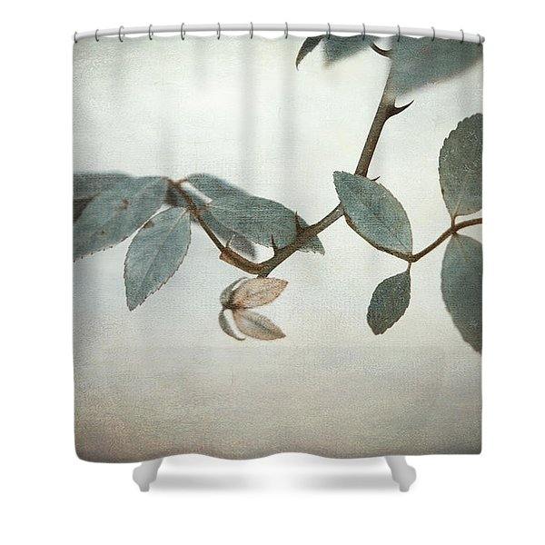 How Delicate This Balance Shower Curtain by Laurie Search