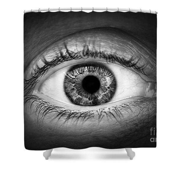 Human eye Shower Curtain by Elena Elisseeva