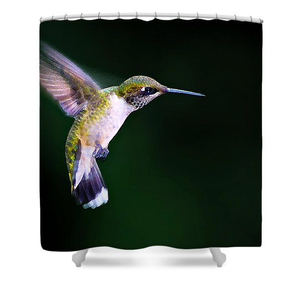Hummer Ballet 2 Shower Curtain by Bill Caldwell -        ABeautifulSky Photography