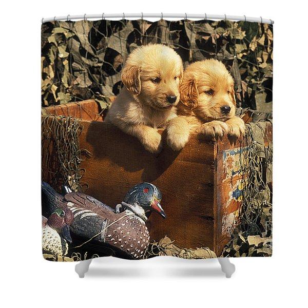 Hunting Buddies - Fs000130 Shower Curtain by Daniel Dempster