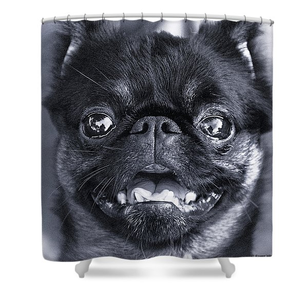 I Am Cute And I Know It Shower Curtain by Roger Wedegis