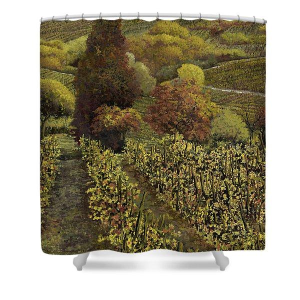 I filari in autunno Shower Curtain by Guido Borelli