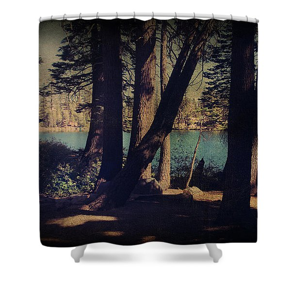 I Sit In The Shadows Shower Curtain by Laurie Search