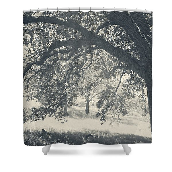 I Would Wrap My Arms Around You Shower Curtain by Laurie Search