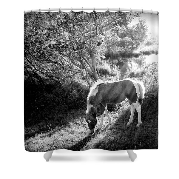 If there's a heaven... Shower Curtain by Janine Riley