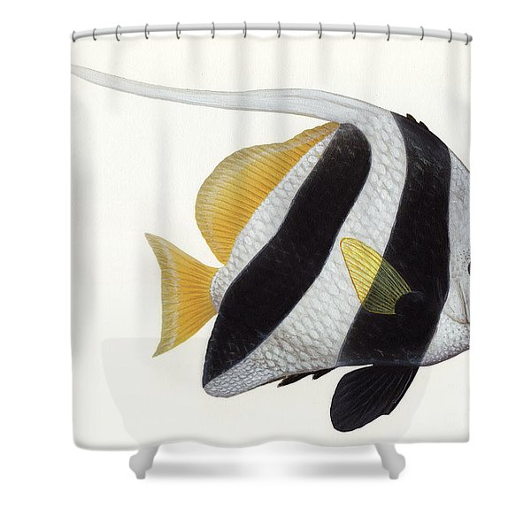 Illustration Of A Pennant Coralfish Shower Curtain by Carlyn Iverson