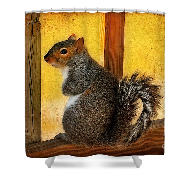I'm Sorry Shower Curtain by Lois Bryan