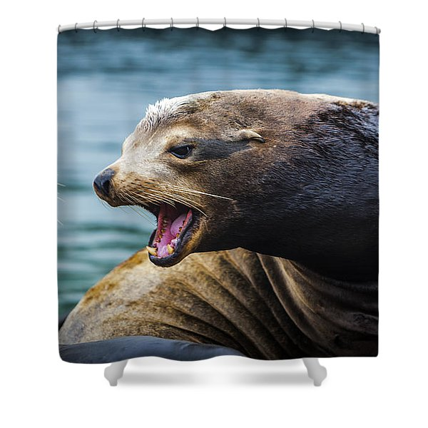I'm The Boss Shower Curtain by David Millenheft