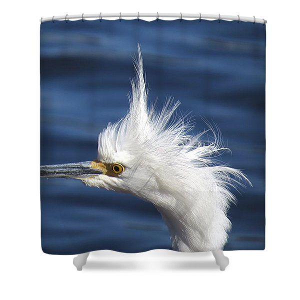 In Shock Shower Curtain by Zina Stromberg