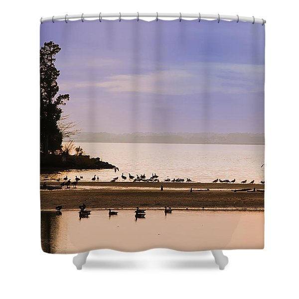 In The Quiet Morning Shower Curtain by Bill Cannon