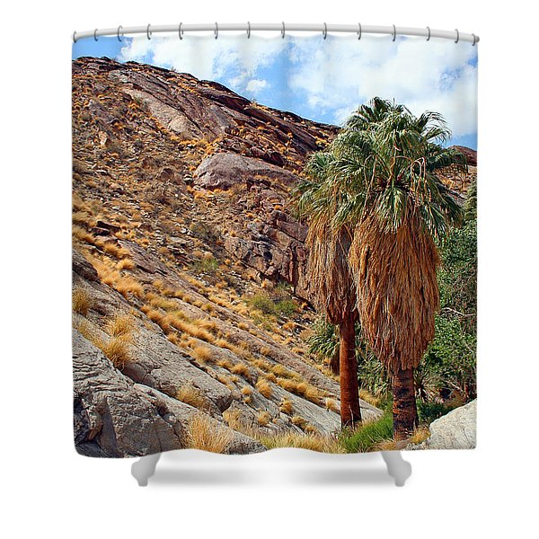 Indian Canyons View With Two Palms Shower Curtain by Ben and Raisa Gertsberg