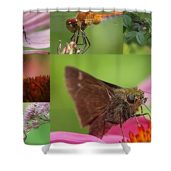 Insect Macro Photography Art Shower Curtain by Juergen Roth