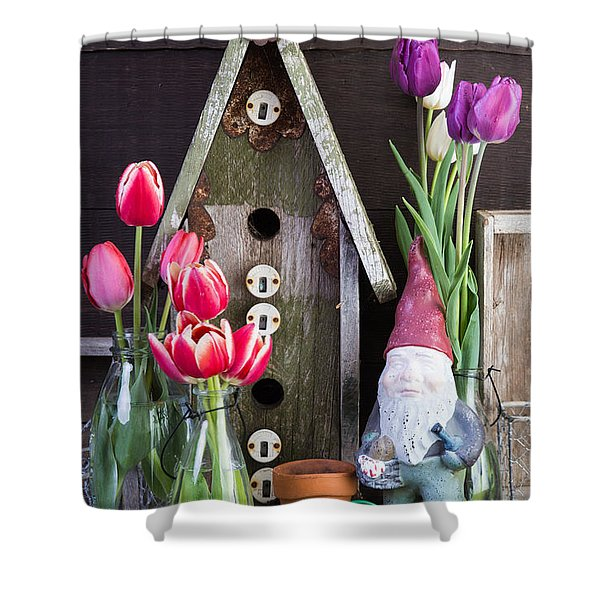 Inside the Garden Shed Shower Curtain by Edward Fielding