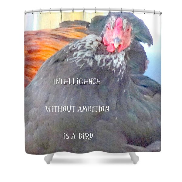 intelligence without Shower Curtain by Hilde Widerberg