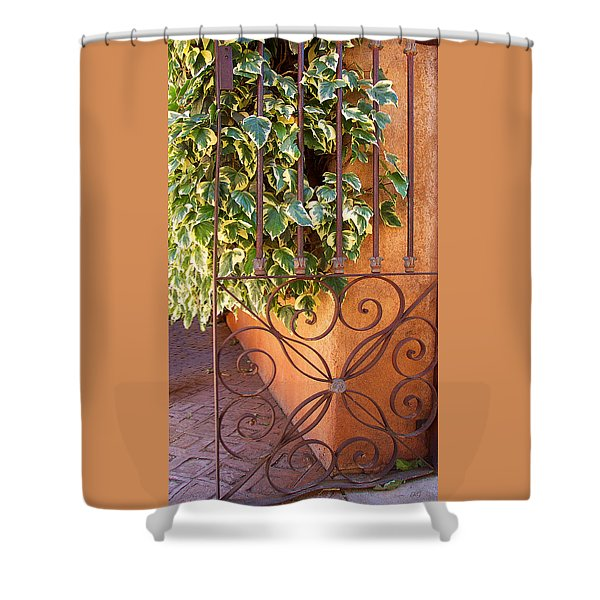 Ivy And Old Iron Gate Shower Curtain by Ben and Raisa Gertsberg
