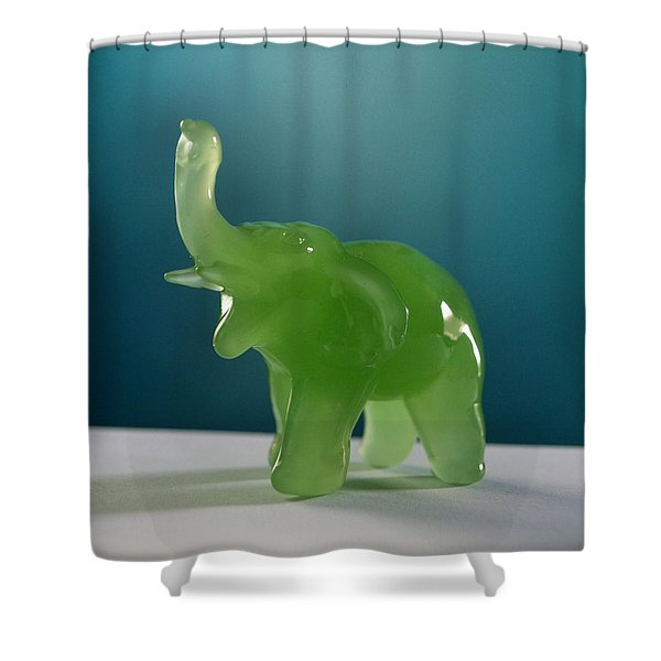 jade elephant Shower Curtain by Tom Druin