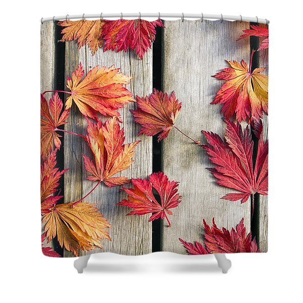 Japanese Maple Tree Leaves On Wood Deck Shower Curtain by David Gn