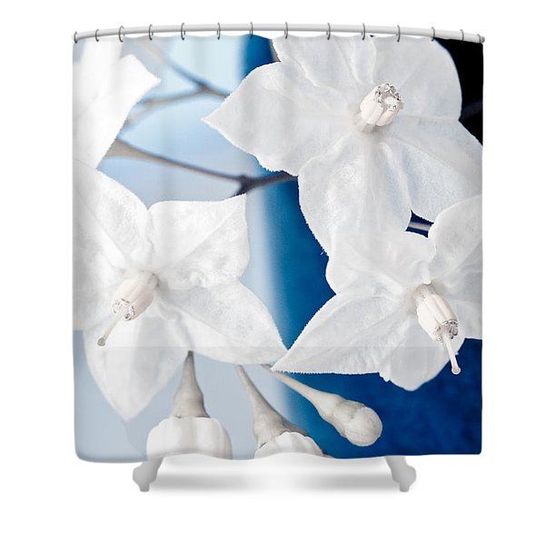 Shower Curtains - Jasmine Shower Curtain by Frank Tschakert